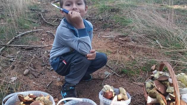 Nalezené houby zaslali: Martina  Režná Straková