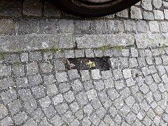 V centru Domažlic mizely dlažební kostky. Kradl  je 39letý muž.