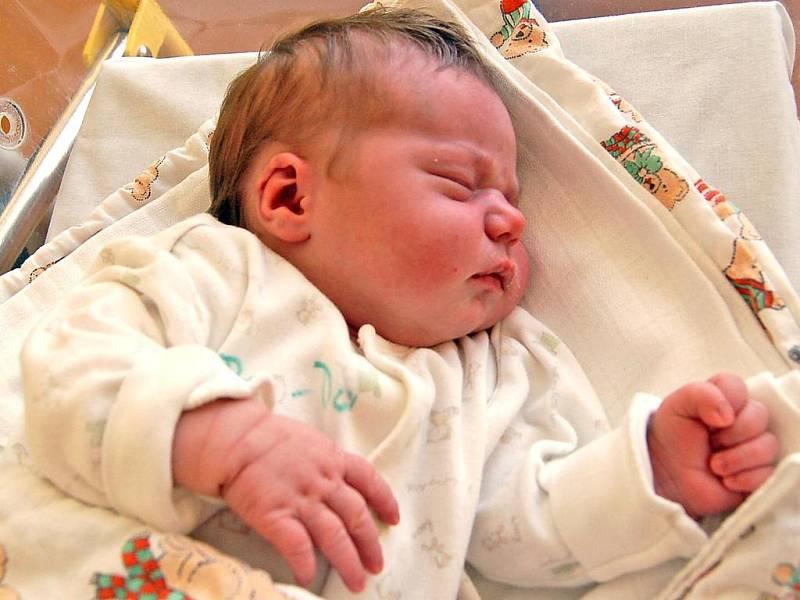 NIKOLKA Vanická ze Zahořan se ve středu 14. ledna v 0.35 hodin narodila mamince Petře Vanické a tatínkovi Janu Marešovi. Ten si její narození nenechal ujít a společně s maminkou vybíral pro dceru jméno. Nikolka vážila 3,70 kg a měřila 48 cm.