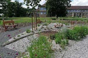 Základní škola v Horšovském Týně je obklopena školní zahradou, jejíž část prošla rozsáhlou revitalizací přírodním projektem Učíme se venku.