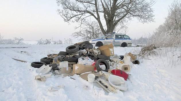 ČERNÁ SLÁDKA na Baldově byla objevena 21. ledna.