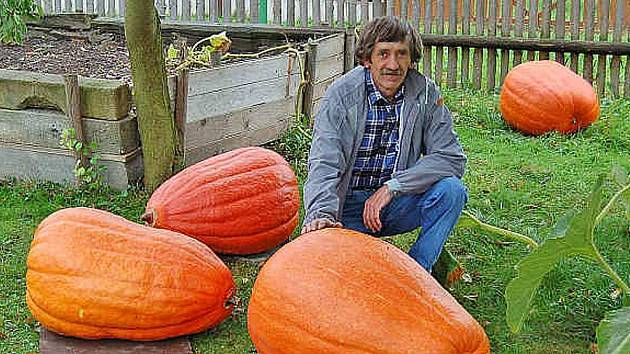 Erich Ubl se svými obřími dýněmi