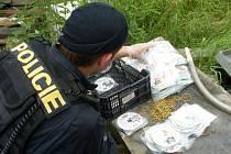 Při zátahu objevili policisté i nelegální kopie CD a DVD.