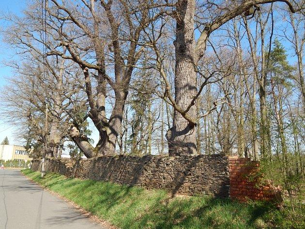 Zdi v Zámeckém parku se dočkají opravy.