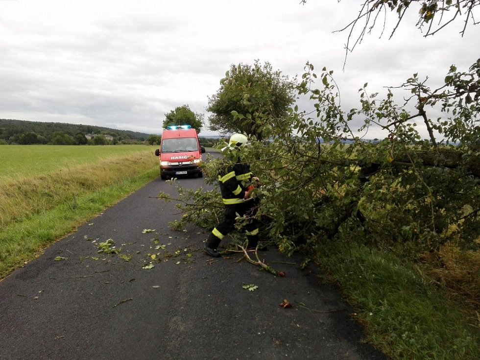 Hasiči SDH Horšovský Týn likvidují v sobotu ráno padlý strom u Kocourova