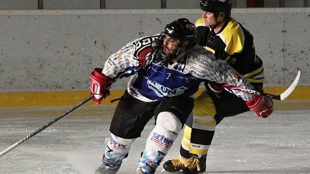 Z utkání mezi HC HP Sršni Domažlice a Ice Barons Waldmünchen.