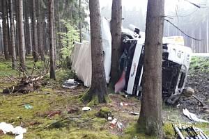Kamion sjel ze silnice a narazil do stromu.