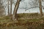 Kniha Po pěšinách Bělskem představuje historii regionu a jeho proměny. Součástí jsou dobové fotografie zaniklých obcí. V publikaci nechybějí ani současné snímky, tento pochází ze zaniklé obce Pleš.