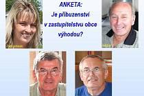 Anketa Domažlického deníku.