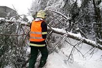 Holýšovští hasiči odstraňovali popadané stromy