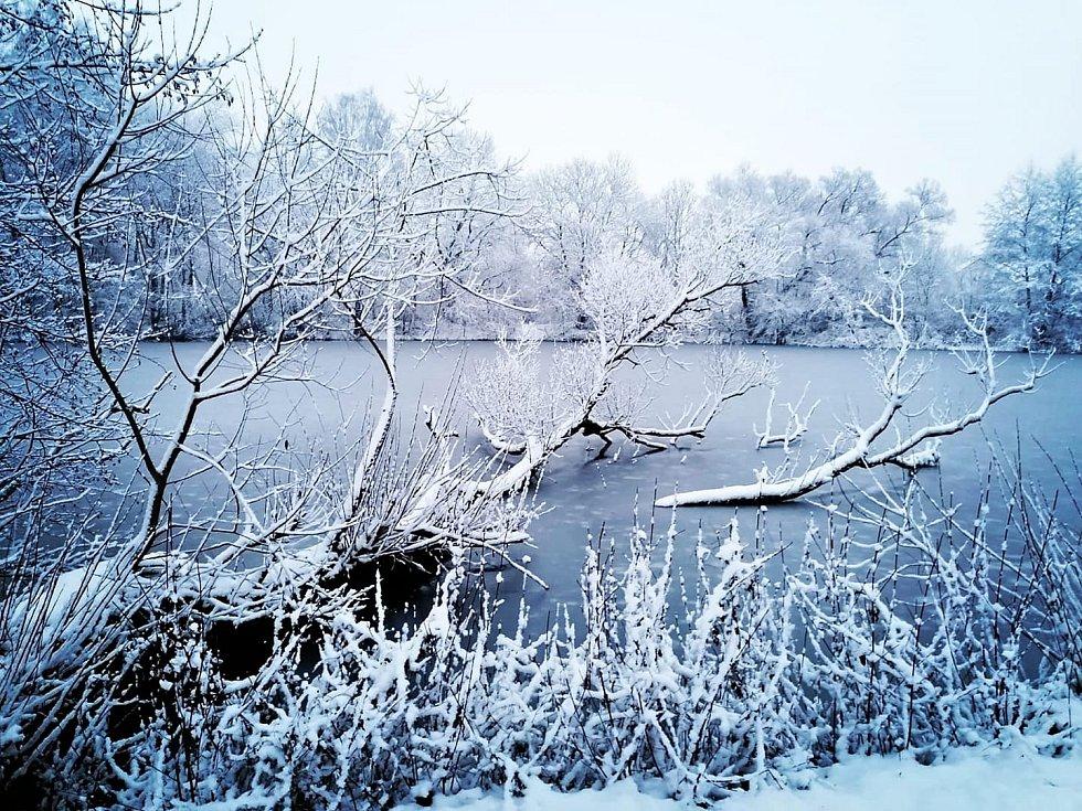 Rybník Kobyla Kdyně.