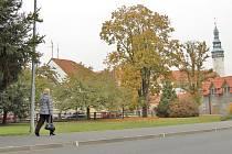 NOVÝ PARK vznikne na zelené ploše u řeky Zubřiny v Hruškově ulici. Do centra města tudy přicházejí lidé, kteří vystupují na železniční zastávce Domažlice-město.
