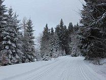 Ochlazení a nový sníh. Kombinace, kterou lyžaři milují, zaručila ideální podmínky pro běžkování v Caparticích i pod Čerchovem.