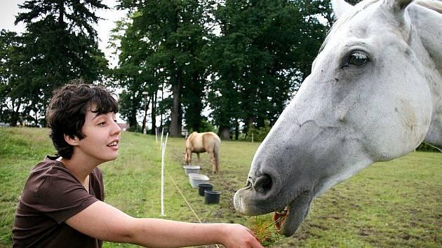 Dětský tábor Zajíček na koni pro děti s tělesnými i mentálními handicapy, pro děti z uprchlických táborů, dětských domovů či sociálně znevýhodněných rodin se konal na Koutském zámku.