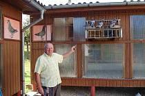 JAKUB  ČERNÝ z Brnířova zasvětil holubářství celý svůj život. O své holuby se s láskou stará už padesát let