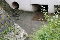 Zbytky splašků i kus toaletního papíru zůstávají ležet v suché části žlabu (na snímku vlevo dole).