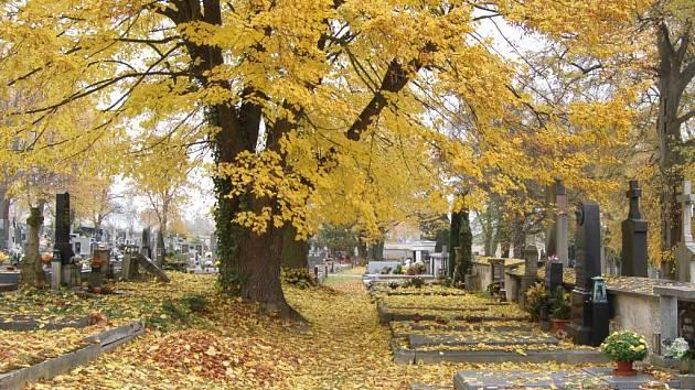 Hřbitovy jsou zasypány listím.