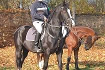 Na Hubertově jízdě v Horšově mohli diváci obdivovat nejen umění jezdců, ale také zástupce různých koňských plemen. Za největšího fešáka byl považován černý hřebec