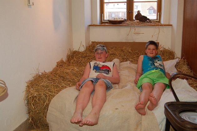 V Muzeu Chodska byla zahájena výstava Lehněte si, ať nám nevynesete spaní.