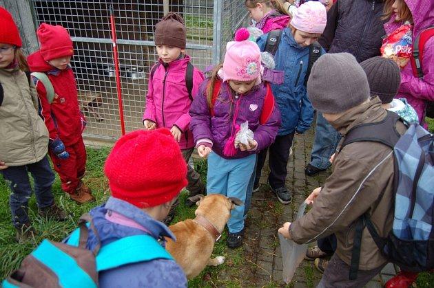 Děti na návštěvě záchytné stanice pro psy na Valše.
