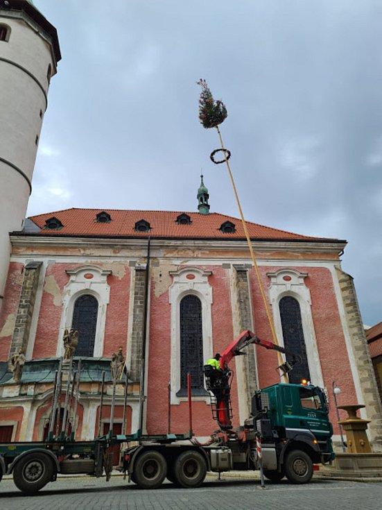 Dobrovolní hasiči z Domažlic letos opět navázali na tradici a postavili na náměstí májku. Foto: Martin Jurčo