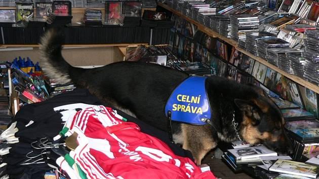 Kontrolorům v asijské tržnici při hraničním přechodu železná pomáhali při práci také psi Celní správy.