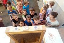 Z návštěvy včelařů v Masarykově základní škole v Klenčí.