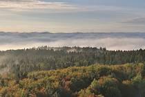 Český les.