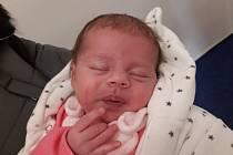 Sofie Komorousová ze Staňkova se narodila v domažlické porodnici 13. listopadu ve 14.25 hodin (3060 g, 48 cm).