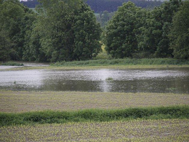 Pole a louky na Staňkovsku připomínaly rybník. Stále ještě se na nich drží voda, která ničí úrodu.