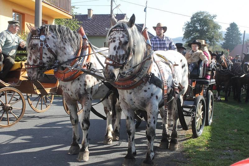 Koně jdou občas i do různých průvodů, například masopustních.