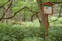 Z místa, kde ležela zaniklá obec Lískovec.