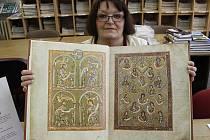 Vyšehradský kodex je vystavován v domažlické knihovně.