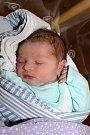 Václav Kocek z Kolovče se narodil 18. února ve 03:43 v domažlické nemocnici s váhou 3 370 gramů a 50 centimetry.