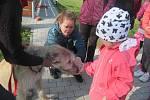 Akce Bezpečný pes se konala v osvračínské škole.