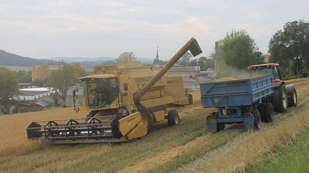 Práce při sklizni na poli ve Kdyni.