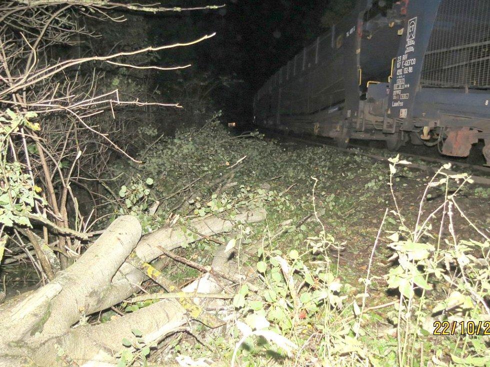 Nehoda nákladního vlaku u Kubice.