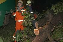 Stromy padlé přes koleje jsou častou příčinou nehod vlaku. Ilustrační foto.