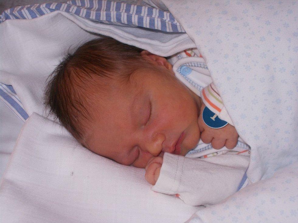 David Balák z Domažlic se narodil 29. srpna v Domažlické nemocnici v 16:40 (3350 g, 48 cm). Rodiče Václava a Václav věděli dopředu, že jejich druhorozené miminko bude chlapeček a jméno pro něj vybírali společně. Na brášku se těšila čtyřletá Anička.