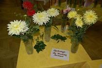 Ze staňkovské výstavy květin.