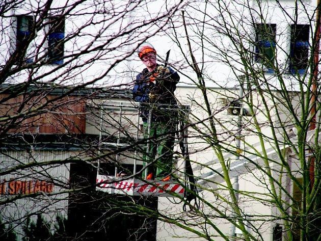 Prořezávku větví prováděli pracovníci DTS v centru Domažlic.