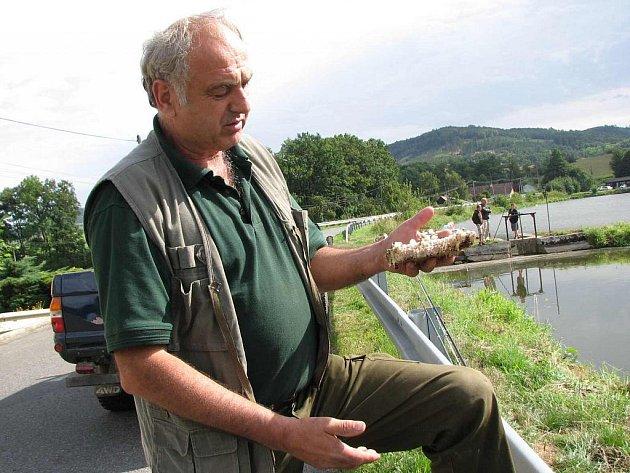 Předseda kdyňských rybářů s malým zlomkem nebezpečného sršního hnízda.