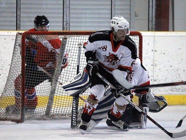 Odvetný zápas finále Domažlické NHL 2012/2013 mezi AHC Devils Domažlice a HC SKP Domažlice.
