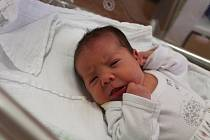 Julie Branyš z Klatov se narodila v klatovské porodnici 2. února v 5.11 hodin (3270 g, 50 cm). Rodiče Lucie a Antonín věděli dopředu, že Toníkovi (5) přivezou domů malou sestřičku.