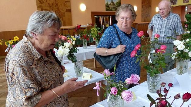 Z VÝSTAVY. Annu Plasovou (vlevo) z Horšovského Týna zajímaly růže. Vystavenou růžovou odrůdu Jadis má doma a dokonce sytěji vybarvenou.