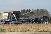NA ŘADĚ POLÍ REGIONU JSOU NYNÍ VIDĚT KOMBAJNY. Zatímco na Mrákovsku je úroda průměrná, na Staňkovsku zemědělci sekají zaschlé porosty.