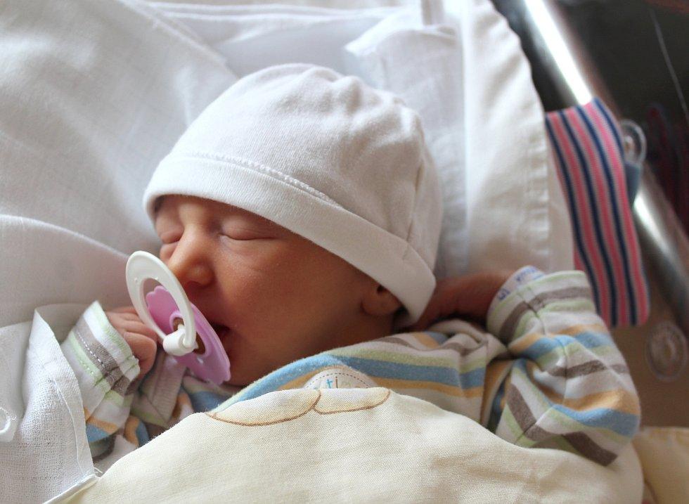 Dvojčata Ester a Emma Hovorkovy se narodila 18. srpna ve Fakultní nemocnici v Plzni na Lochotíně. Ester se narodila ve 2:57 hodin a Emma o minutu později. Po příchodu na svět vážila prvorozená Ester 2940 gramů a Emma 2660 gramů. Rodiče Zuzana a Miroslav z