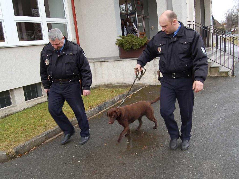 Strážníci ho odvedli s tím, že pes se prý měl už včera toulat po Domažlicích.