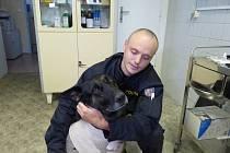 ZRANĚNÝ ROMER S PSOVODEM FRANTIŠKEM KOHOUTEM v pátek 26. září na ošetřovně v areálu domažlické policie.