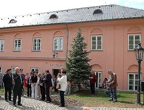 Muzeum ve Kdyni.